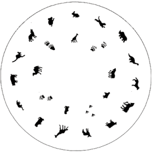 Medea Design Wheel - Animals