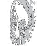 Dennis Mathewson's Island FX Nanos Set of 4 – D